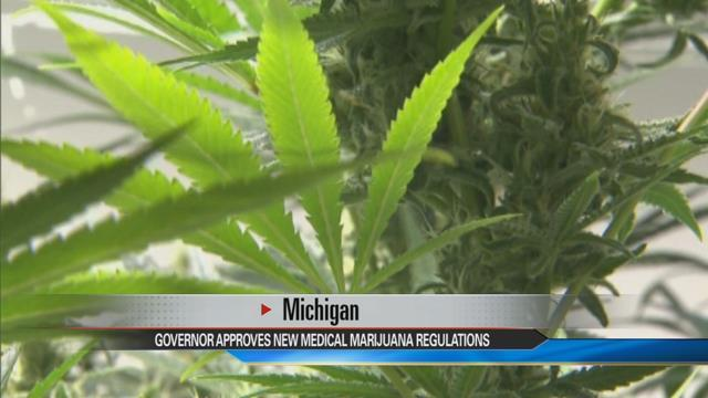 Michigan medical marijuana laws changing
