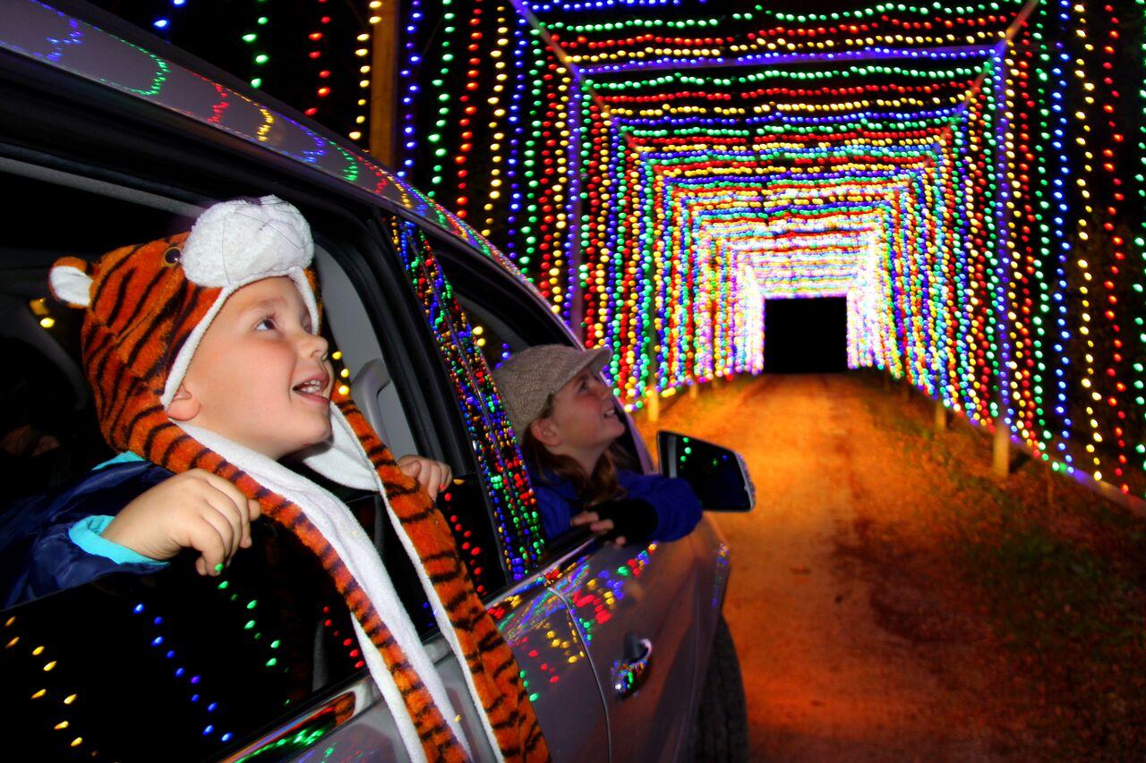 Christmas Carnival of Lights November 25