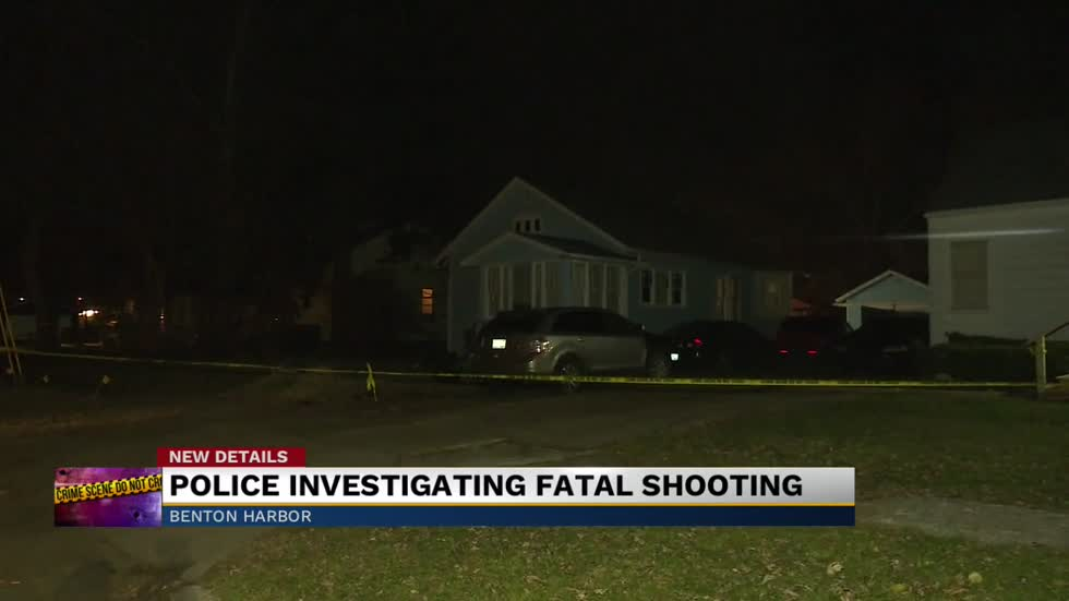 29 Year Old Woman Shot And Killed In Benton Harbor Identified