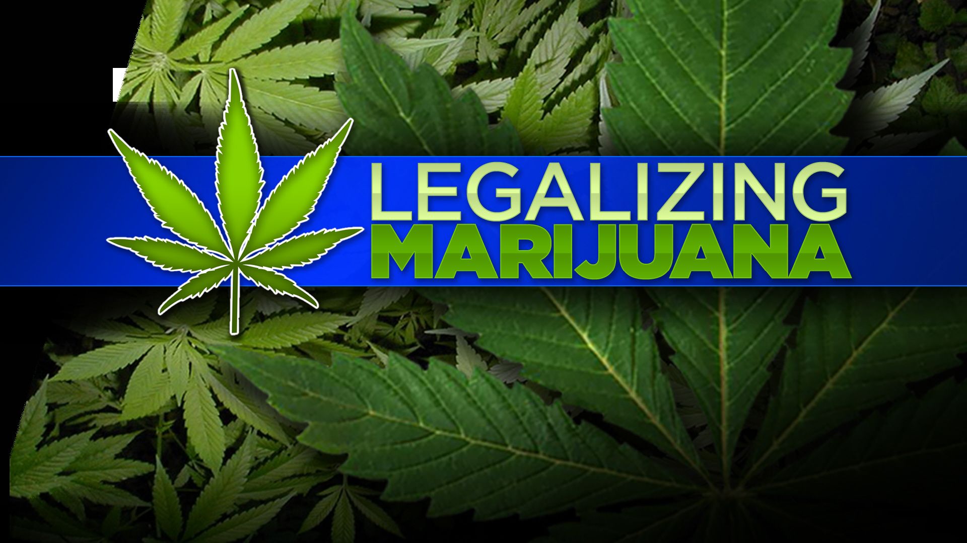 Southeast Wisconsin Voters Say Yes To Marijuana