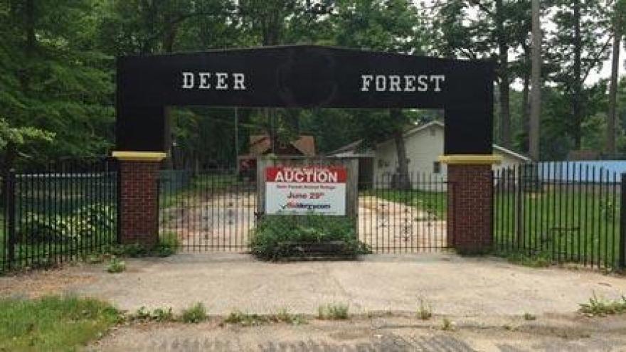 Deer Forest animal refuge up for auction