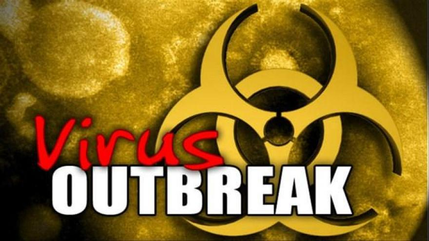Image result for virus outbreak