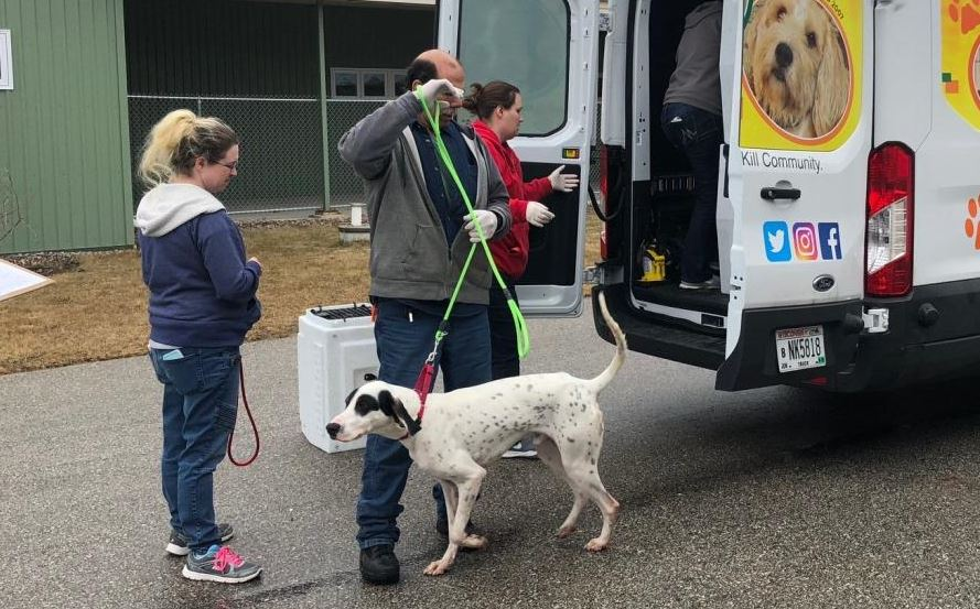 HAWS moves 24 separated dogs for Brucellosis to new facility