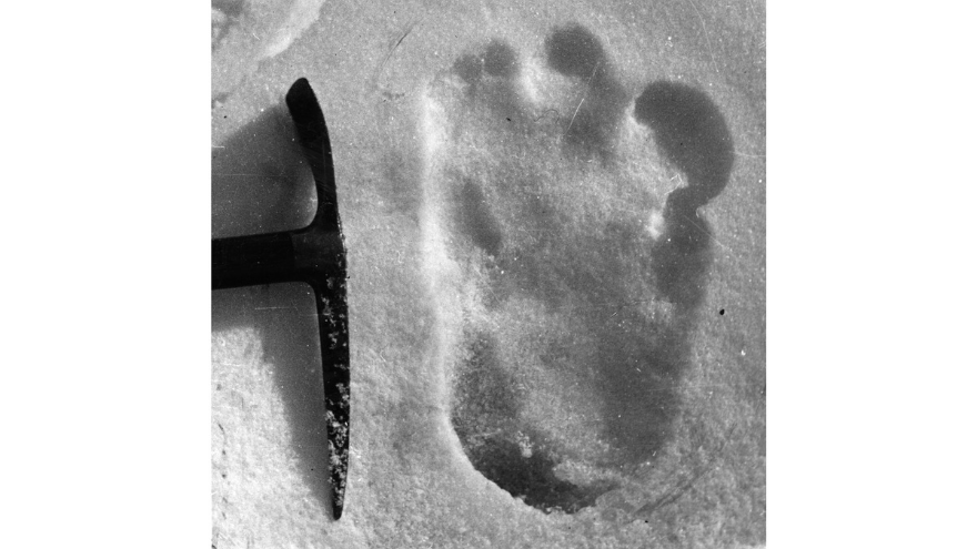 Indian Army Tweet Claims Yeti Footprints Sighted