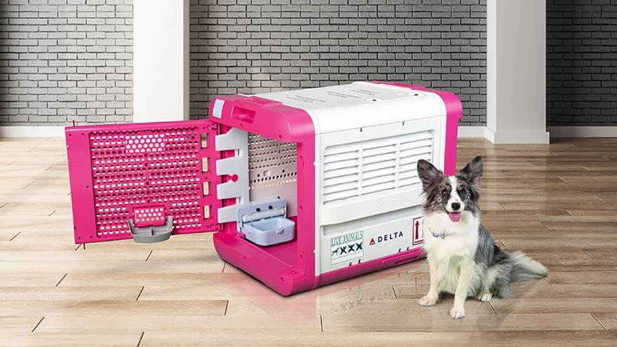 Delta Has A New Upscale High Tech Pet Carrier Available