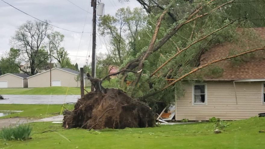 Image result for storm damage