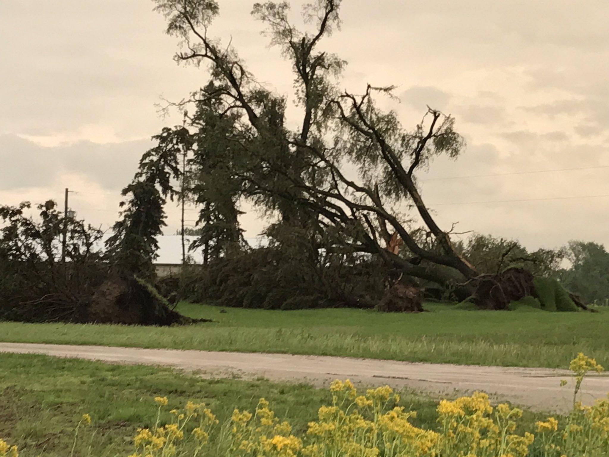 Photos: Strong storms move through Michiana