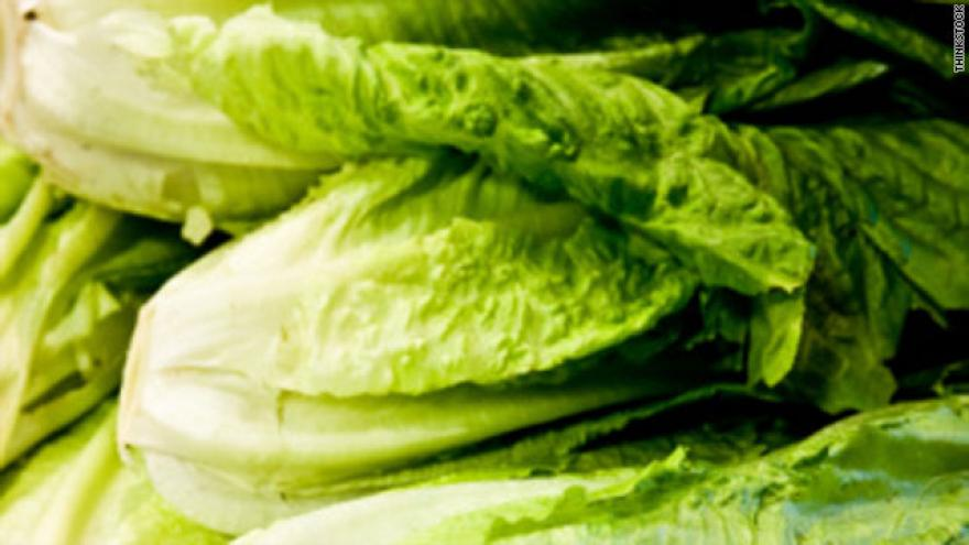 Romaine lettuce 'particularly susceptible' to E. coli outbreaks