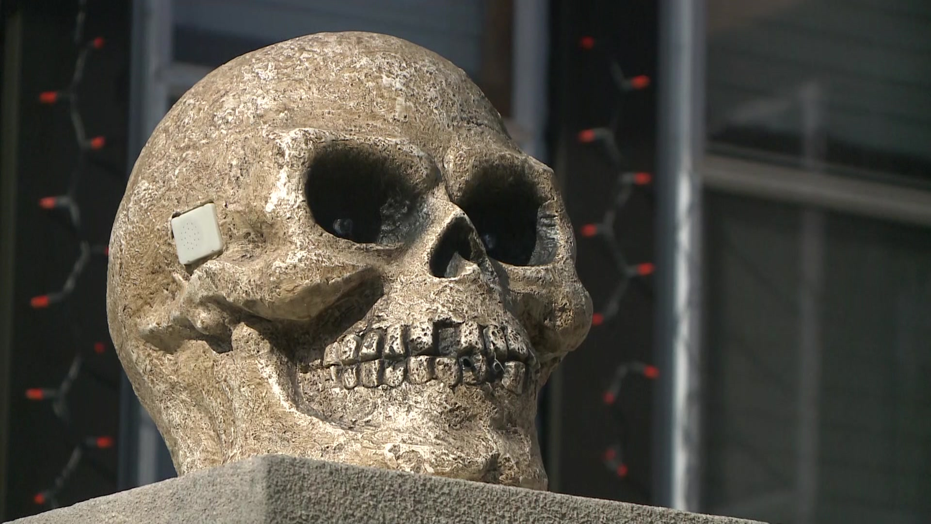 Homeowner upset after expensive Halloween decorations stolen